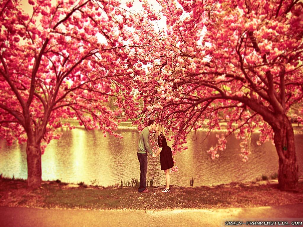 رومانسية 2014 1367153612342.jpg