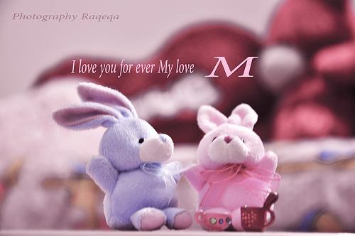 love العربية 2014 1373331716232.jpg