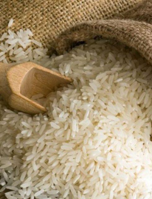 دراسة جدوى مشروع تجارة الأرز