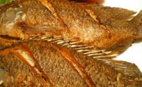 فوائد السمك المقلي