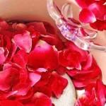 كيفية تحضير ماء الورد فى البيت و فوائده للبشرة