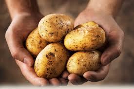 طريقة حفظ البطاطس النيئة