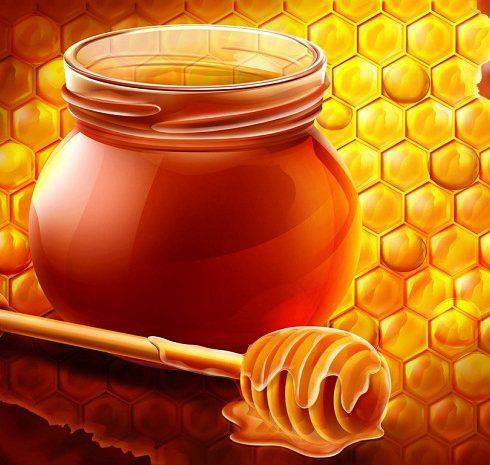 فوائد العسل النحل