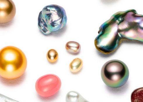 انواع الحجر