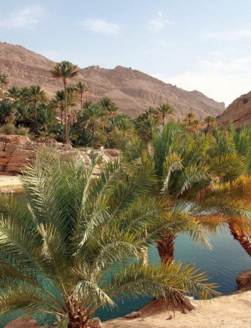 أفضل المواقع التى يمكن زيارتها أثناء النهار في عمان