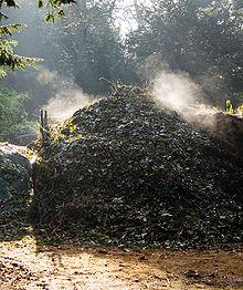 220px-compost_heap