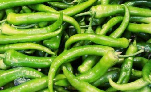فوائد الفلفل الأخضر للحوامل