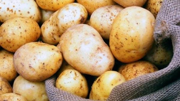 دراسة جدوي مشروع تقشير وتجميد البطاطس
