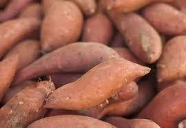 طريقة تخزين البطاطا الحلوة