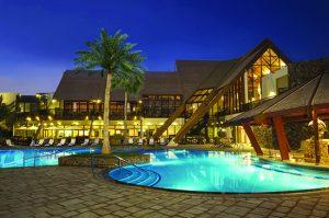 فندق palm tree