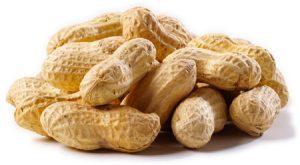 peanut20