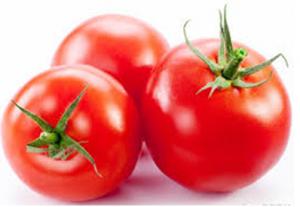 طماطم لعمل كباب بالكوسة والبصل