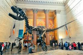 أفضل متاحف نيويورك