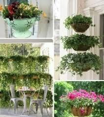 زراعة النبات