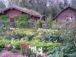 كيفية رعاية النباتات المنزلية