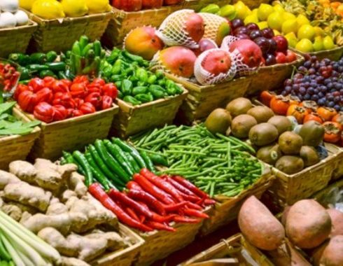 دراسة جدوي مشروع انتاج الخضروات المجمدة