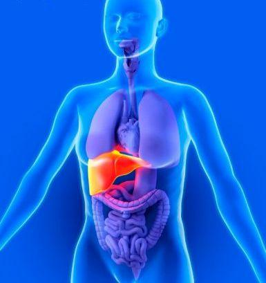 liver-cancer-97358439