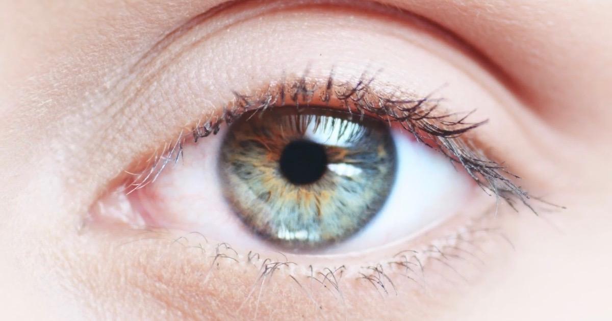 افضل انواع العيون
